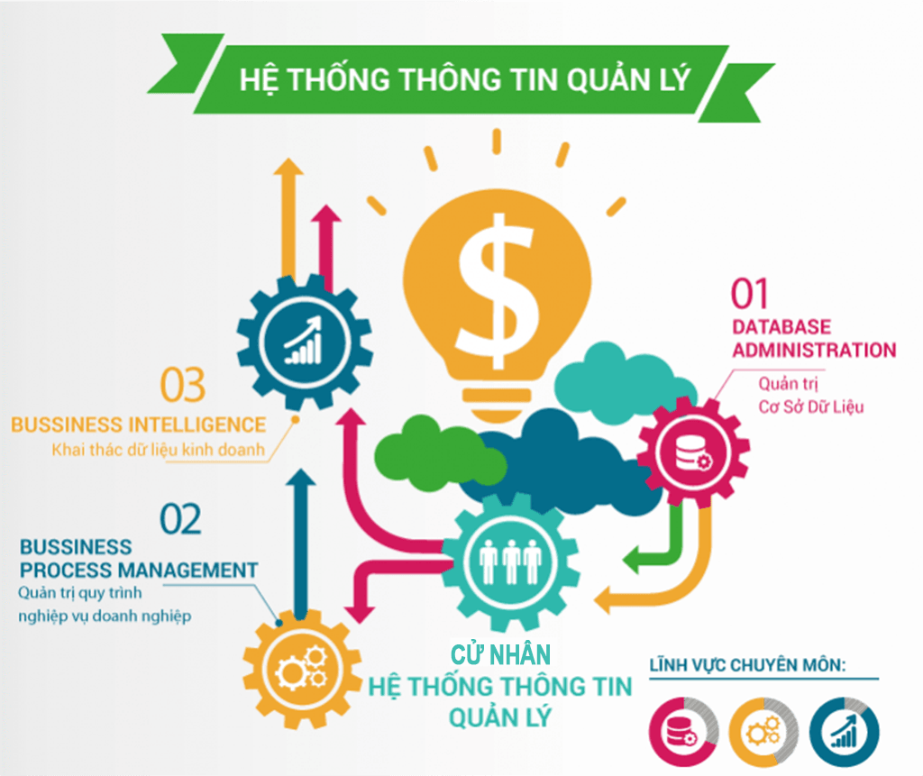 httt-quan-ly-infographic.png